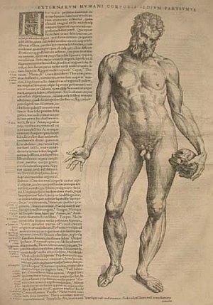 Vesalius Epitome male nude